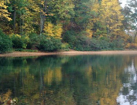 波士頓郊區的華爾敦湖