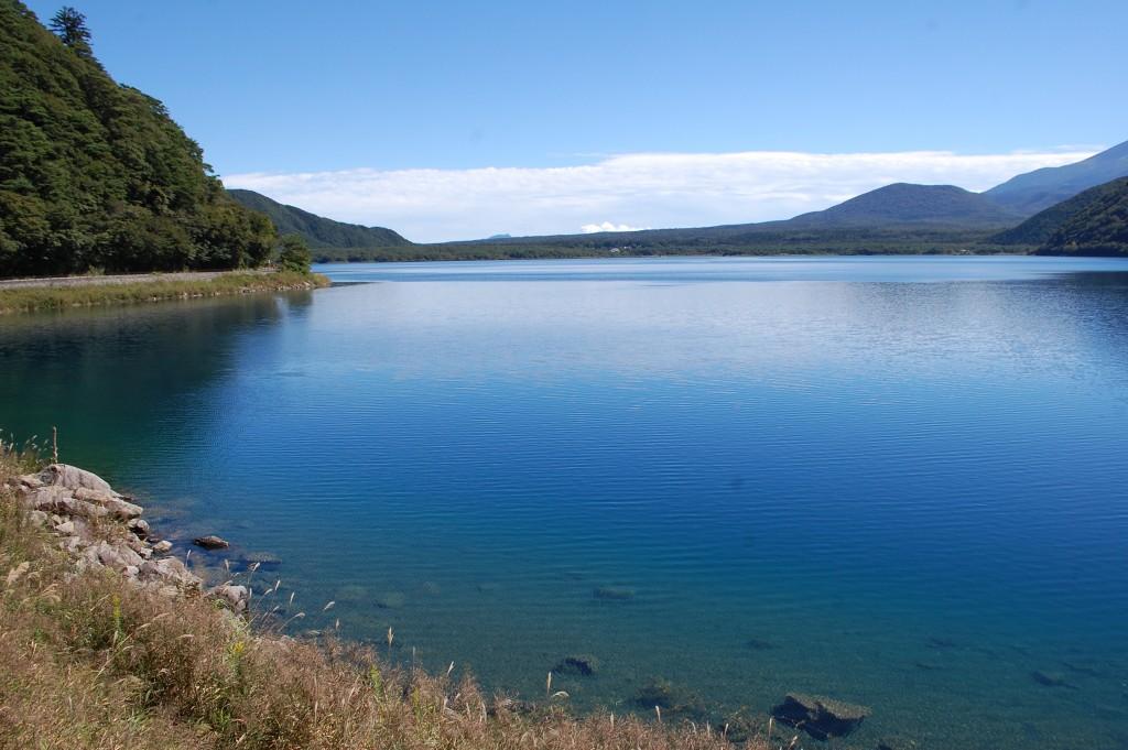 清澈見底的本栖湖